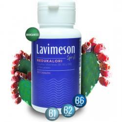 LAVIMESON - REDUKALORI - Imagen 1